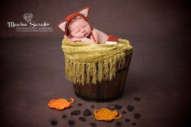 little fox, baby in bucket, newborn photoshoot
