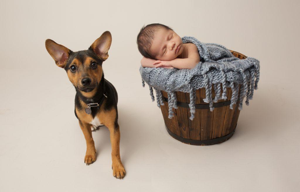 Nuneaton baby photographer