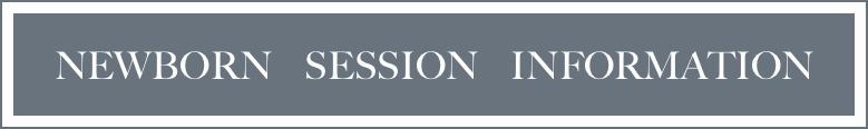 newborn session information