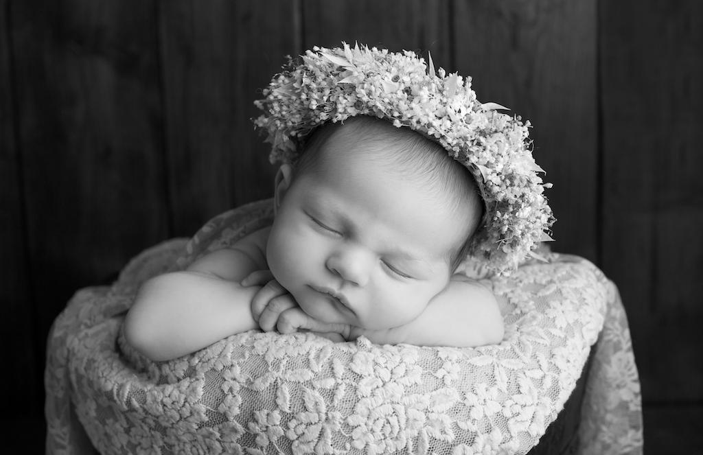newborn baby portrait studio leamington